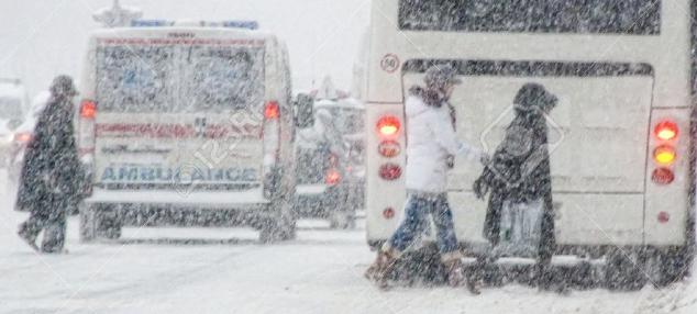 06 Snow.jpg