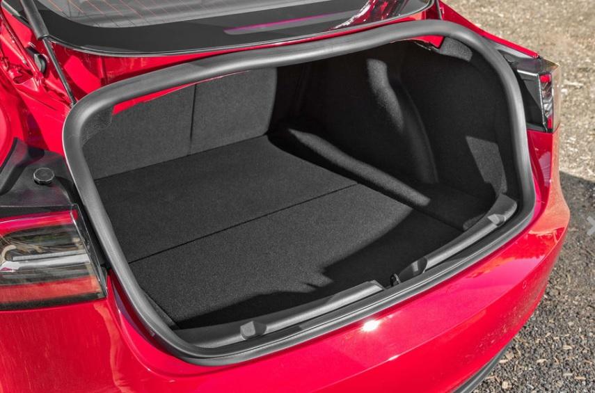 3 trunk.jpg