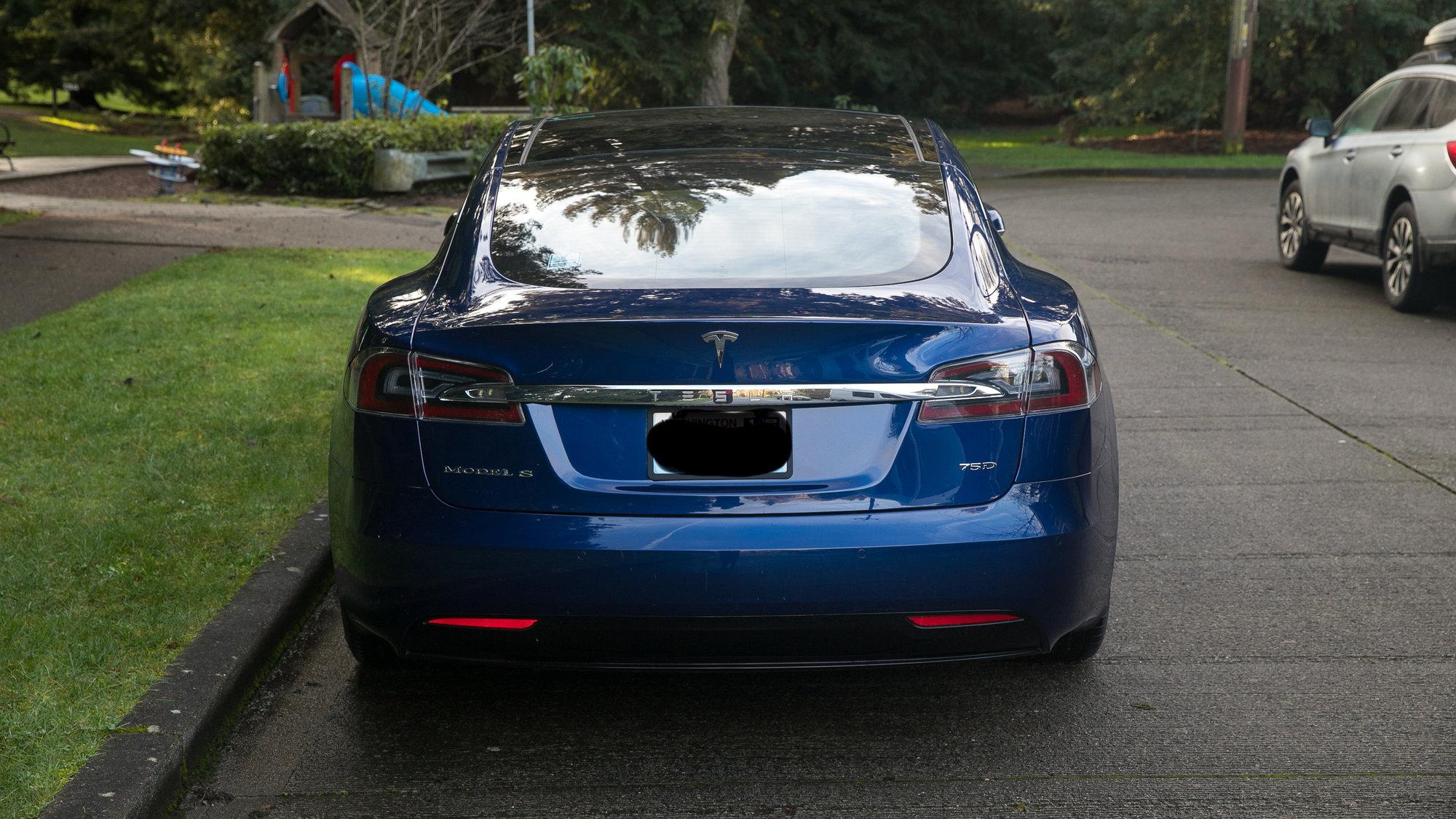 3Tessie rear view.jpeg