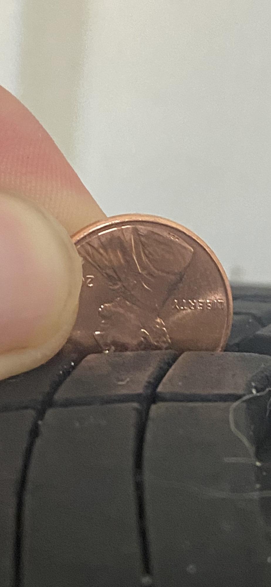 4 penny closeupIMG_2528 copy.jpg