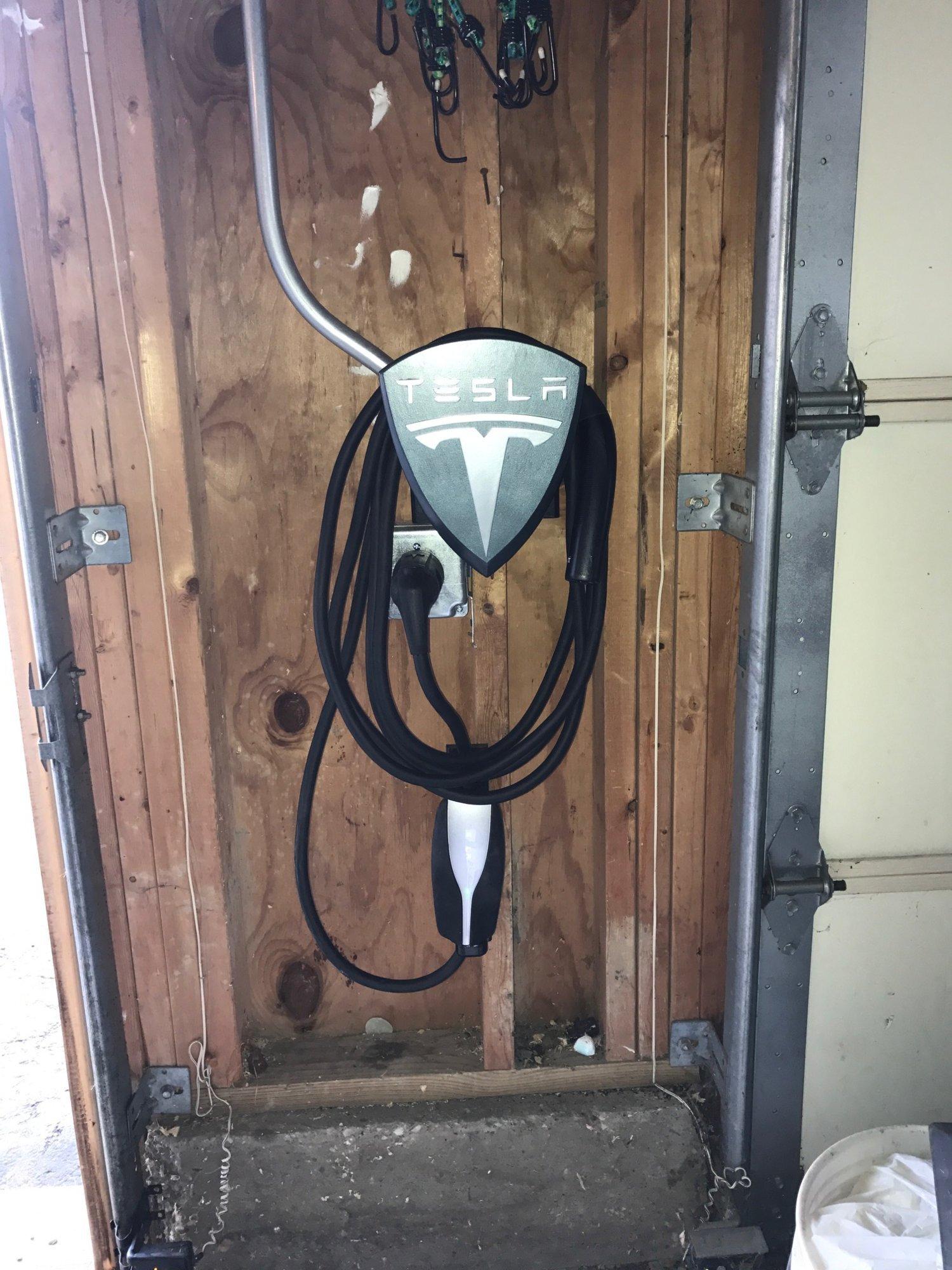 5. Tesla - Hanging 2.JPG