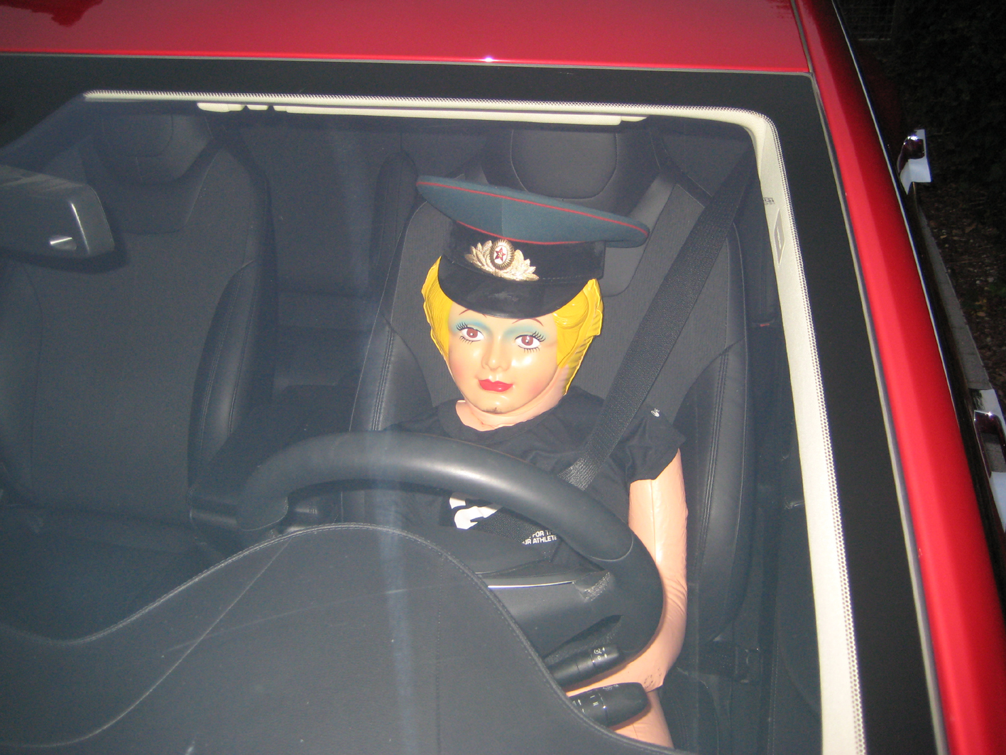 autopilot 4.jpg