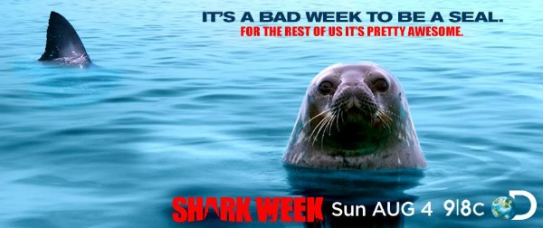 Bad-Week-to-Be-a-Seal.jpg