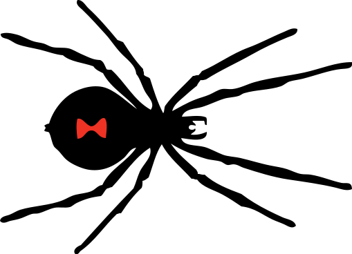 black_widow_spider_red_spot.png