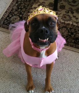 Chata Princess.JPG