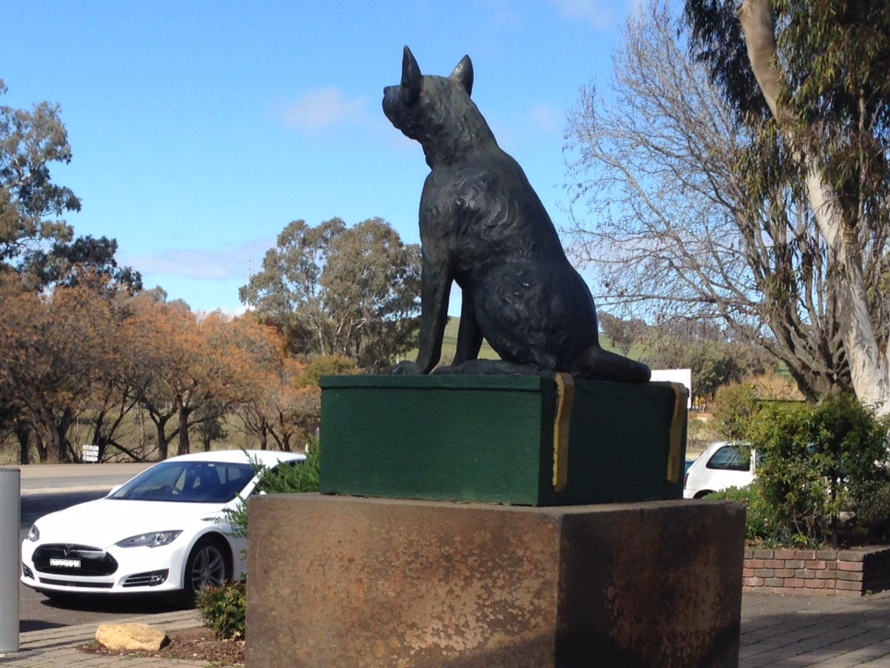 Dog on the tuckerbox.jpg