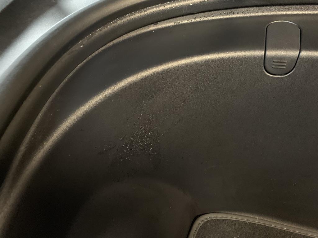 Frunk Compartment condensation.jpg