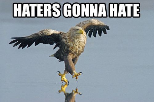 haters.jpeg
