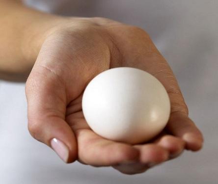 holding_egg.jpg