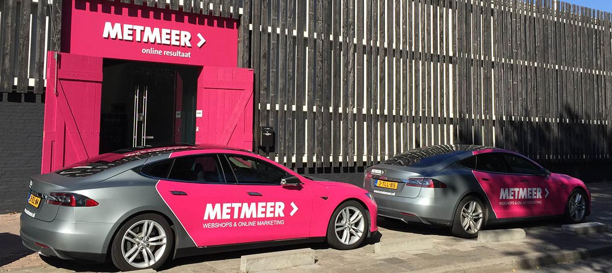 METMEER-Tesla-2015.png