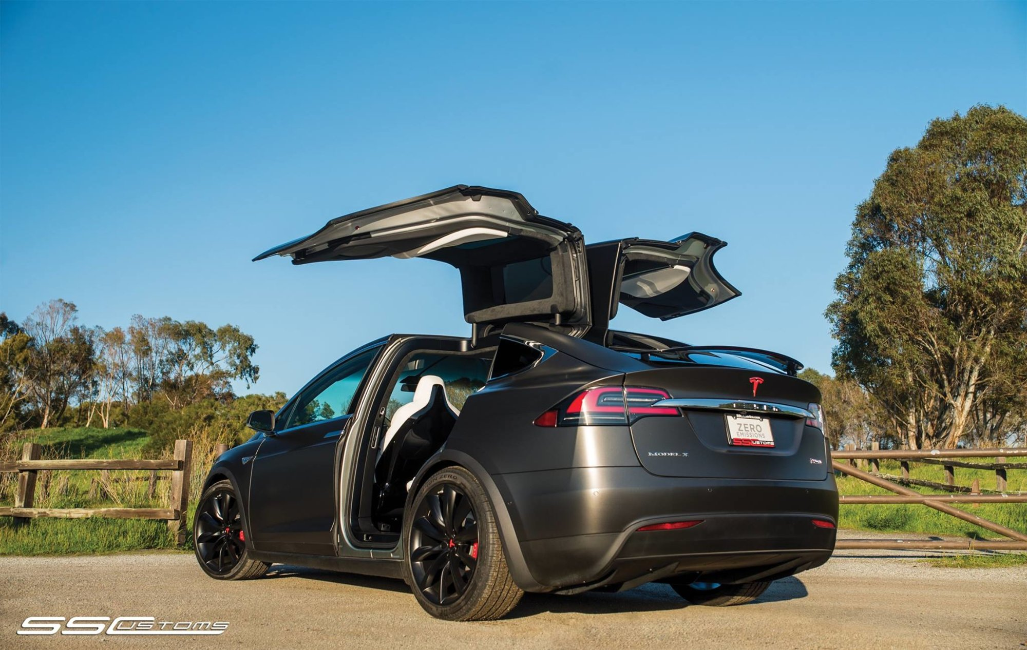 Model X - Satin Pearl Nero 2.jpg