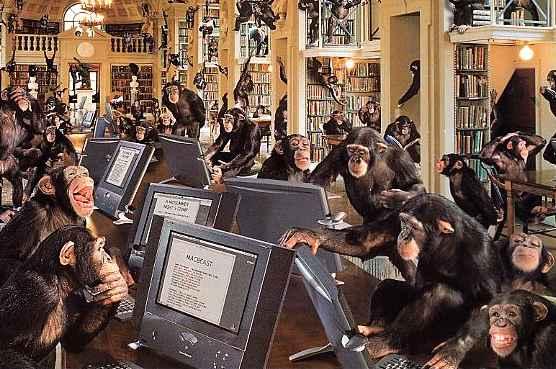 monkey_process[1].jpg