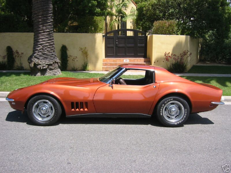 orange_stingray.jpg
