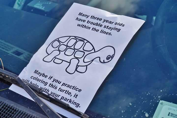 parking turtle.jpg