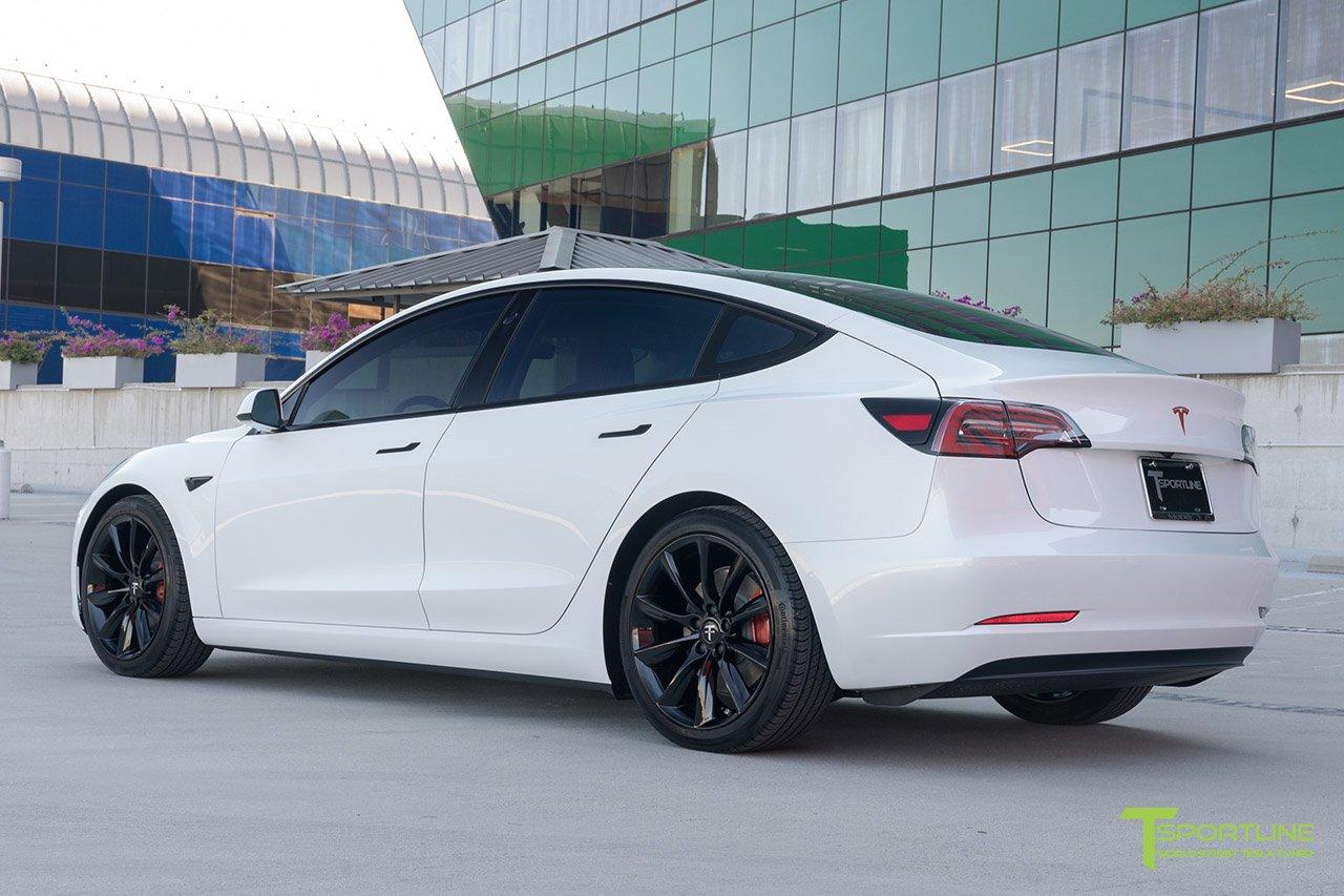 PearlWhite-Tesla2.jpg