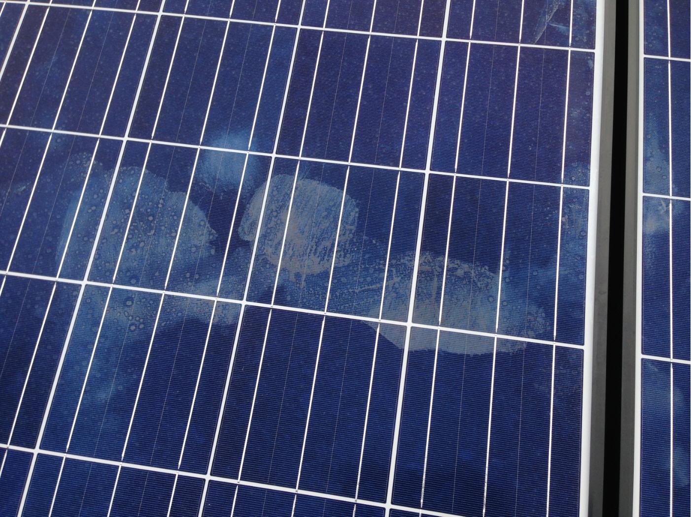solarpanel3.jpg