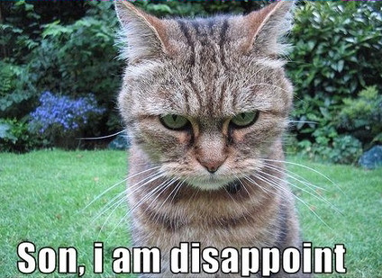 son_i_am_disappoint_troll_cat.jpg