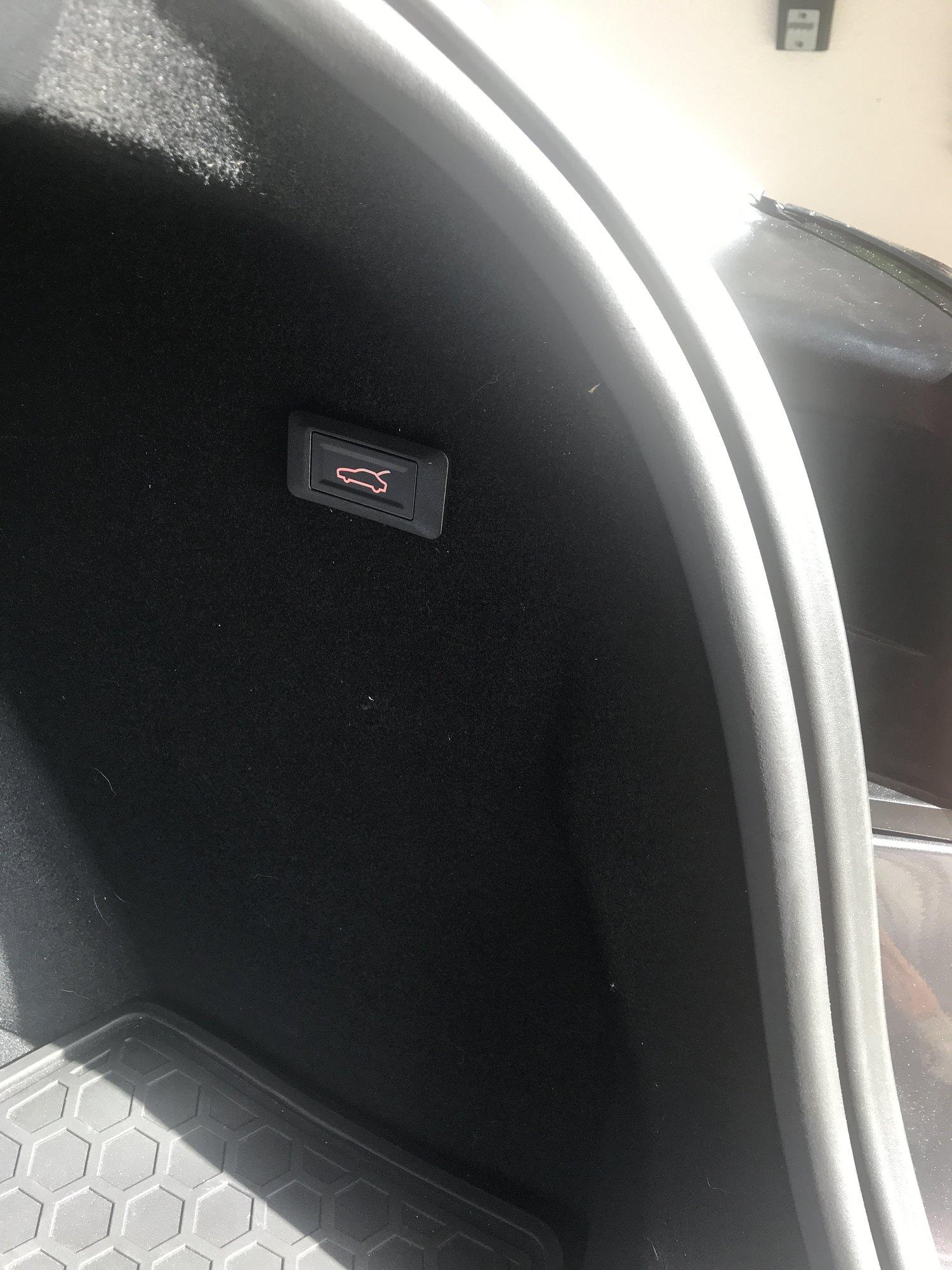 Tailgate Button.JPG