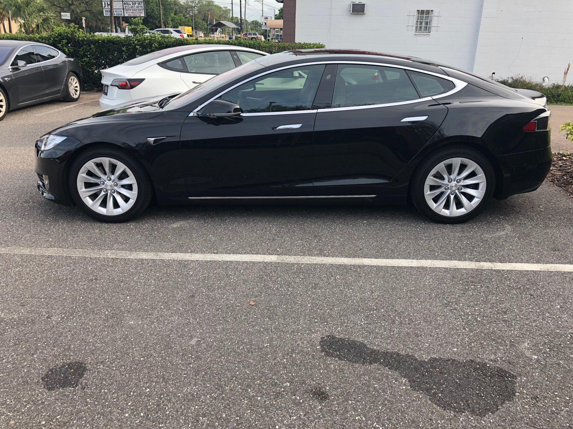 Tampa Tesla Tint.jpg