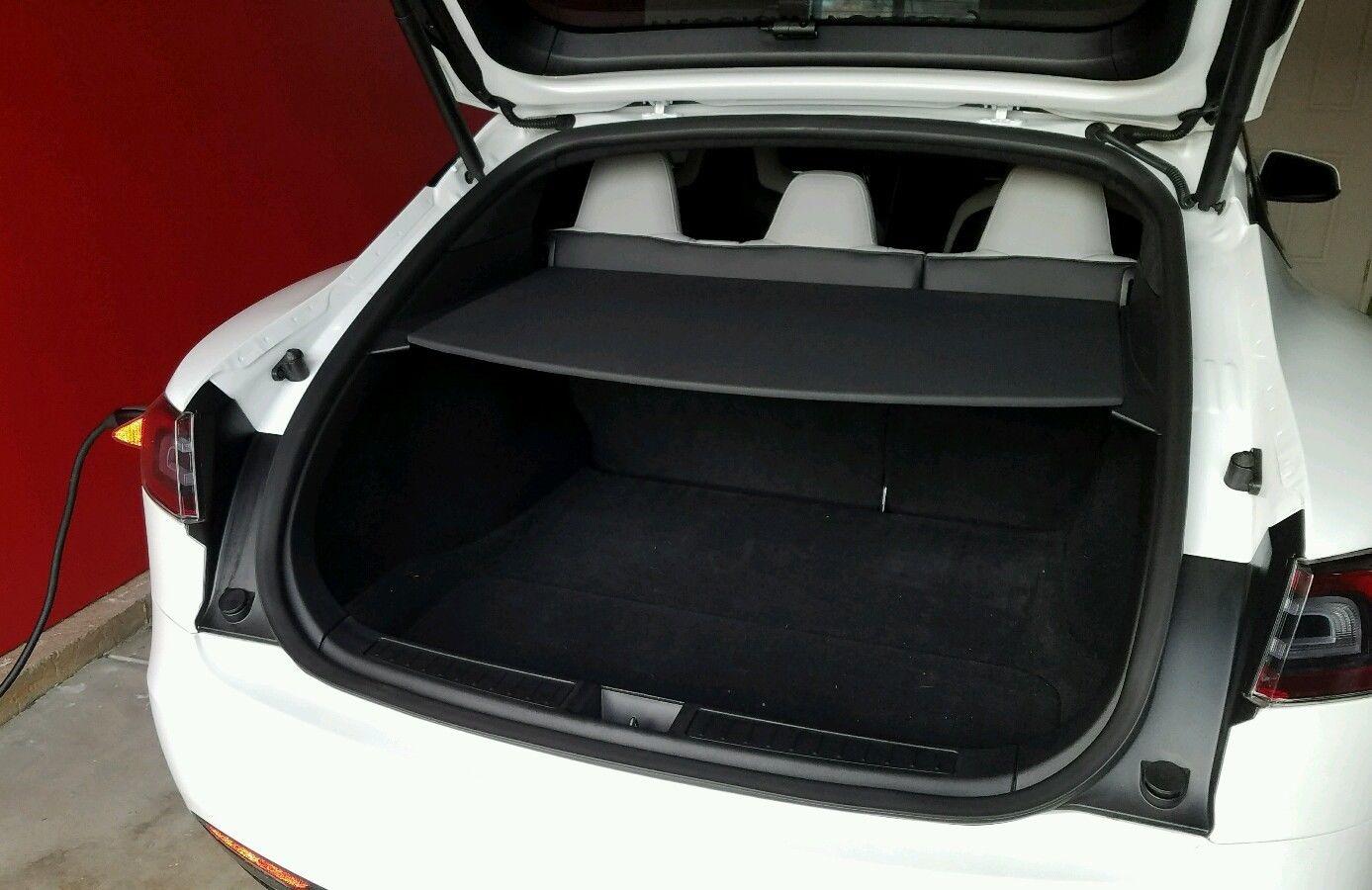 Tesla 81.jpg