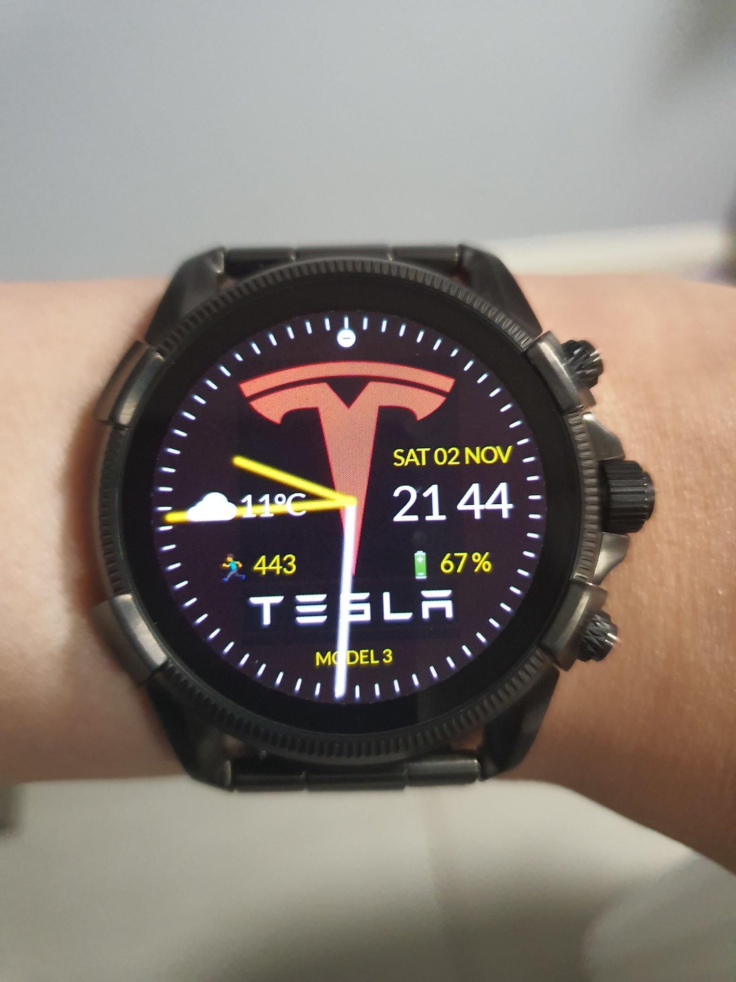Tesla face.jpg