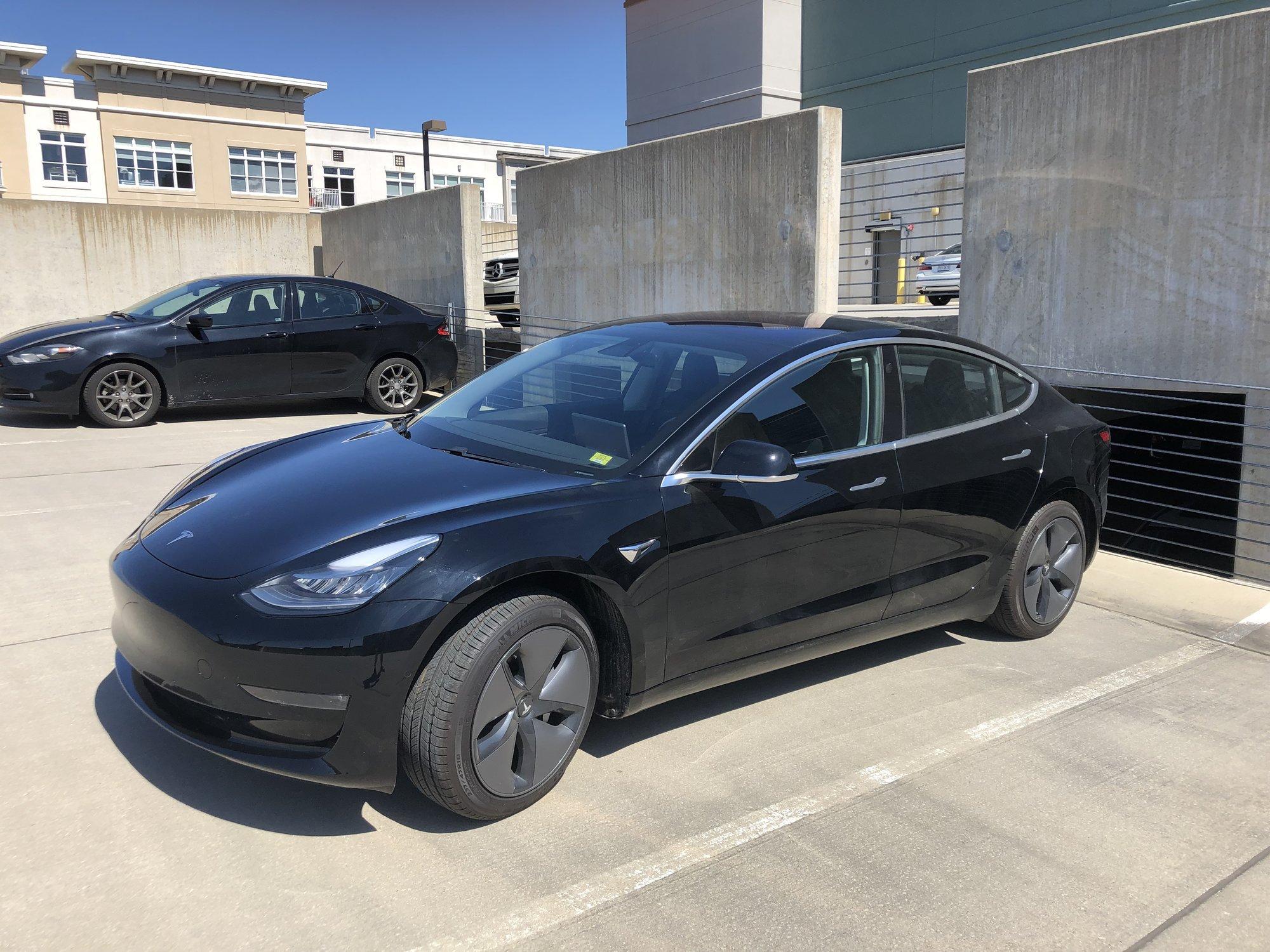Tesla Left.JPG