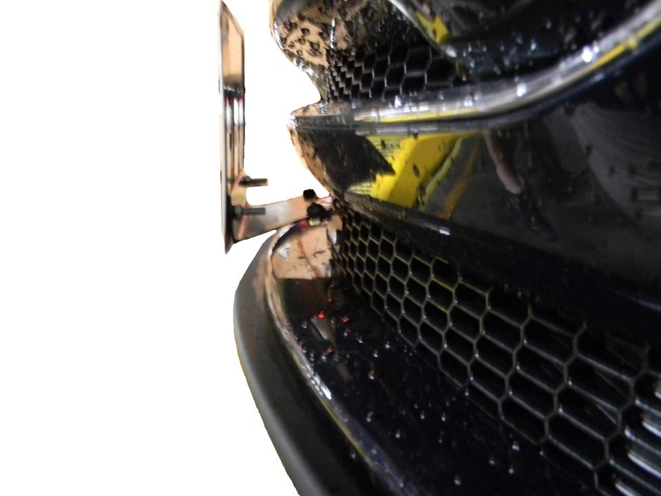 Tesla License Plate Side View.jpg