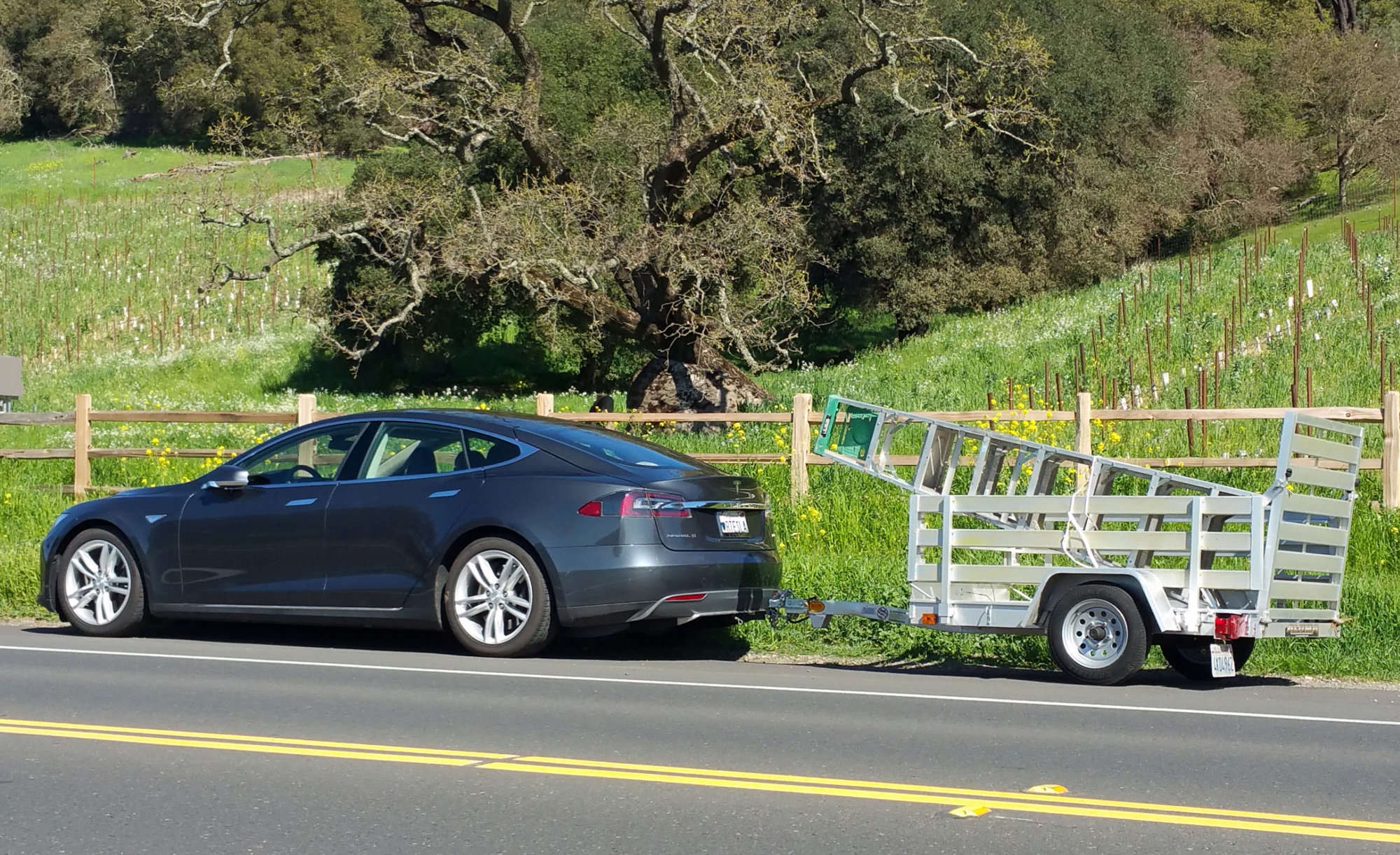 Tesla Pickup.jpg