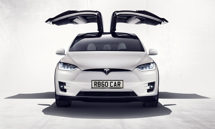 Tesla With Plate.jpg