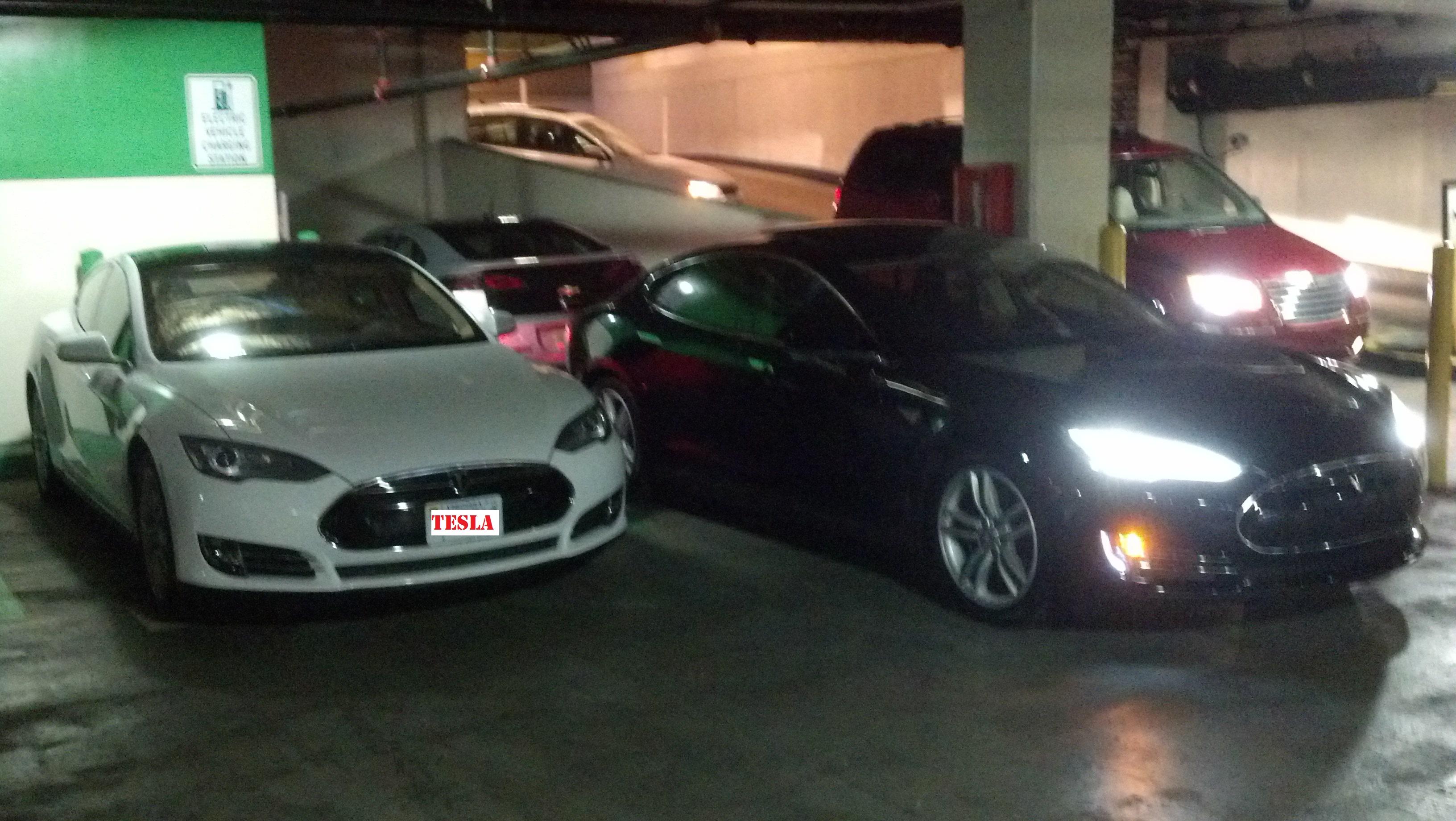 TeslaAndMe.jpg