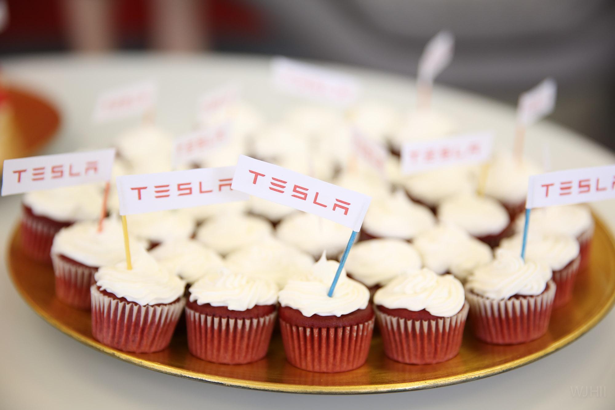 TeslaMotorsClub_Tampa_28APR13_0017.jpg