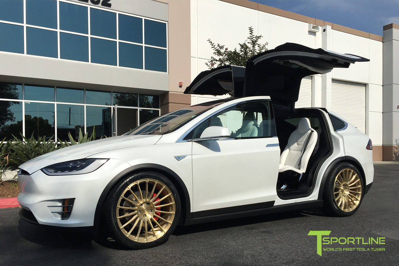 white-model-x-p90d-l-mx118-gold-wheels.jpg