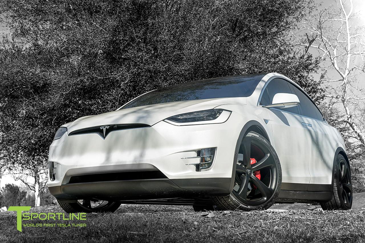 white-tesla-model-x-silver-ts5-2022-wheel-set-1.jpg