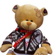E. Bear