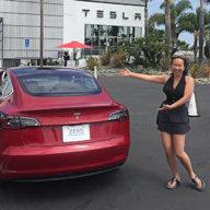 Windshield Shade Tesla Motors Club